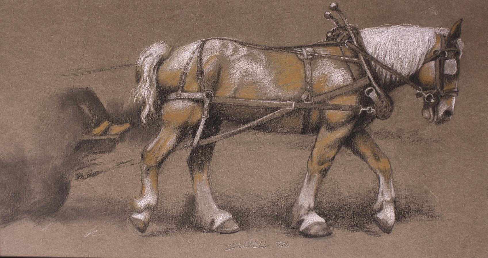 "WORK HORSE/ tonal drawing/size 14"" x 26"""